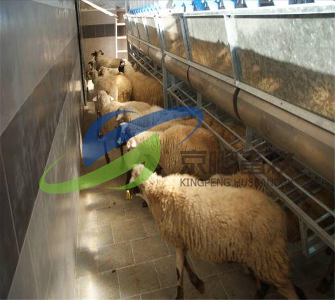 17-羊可以快速退出。气缸平稳的把栏架拉到90°,羊快速退出。所有的结构件都是圆形的,可以避免羊受伤。之后棚架会慢慢降落,回到原来的位置。.jpg